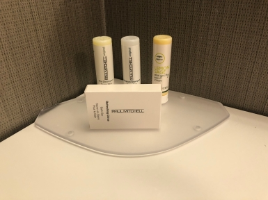 Courtyard by Marriott Toronto Downtown (17)