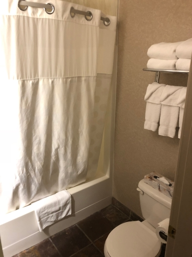 Ramada Limited Vancouver Downtown (12)